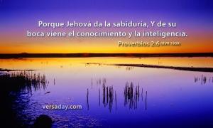 proverbios 2 6